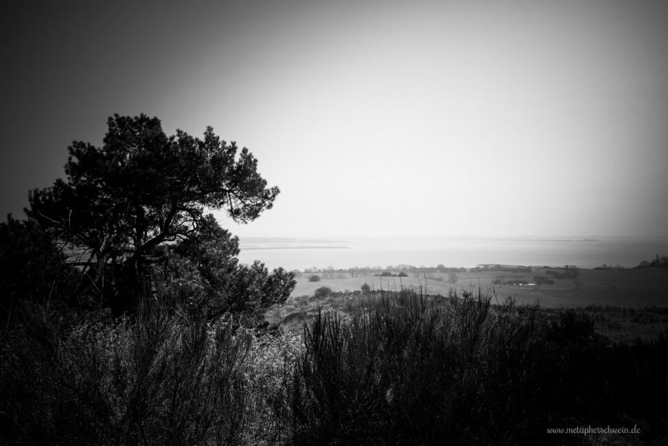 Blick von Hiddensee nach Schaprode