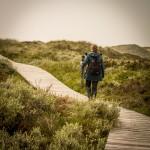 Naturschutzgebiet Dünenlandschaft auf der Insel Amrum