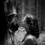 Friesen sind stämmige Pferde mit einem gewölbten, oft hoch angesetzten und meist sehr kräftigem Hals