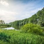 Blick auf den nördlichen Teil des Rintelner Doktorsees, dem Naturschutzgebiet
