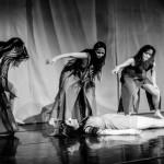 Titan Arum | Proserpina Nacht 2016 | © Michael Eichhorn