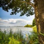 Steinhuder Meer mit idyllischem Blick auf Steinhude